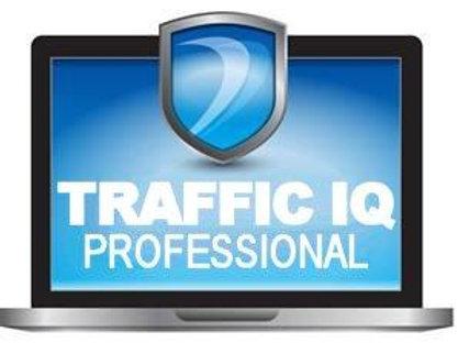 TrafficIQ Security Testing Services