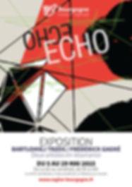AFFICHE ECHO.web.jpg