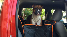 iBuddy Seat Cover with Mesh Window