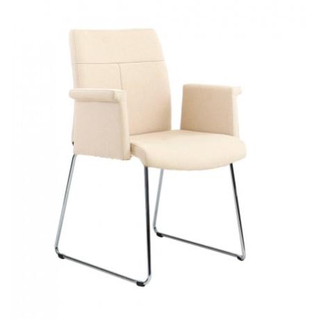 Rouillard Spyder Sled Metal Base Side Chair