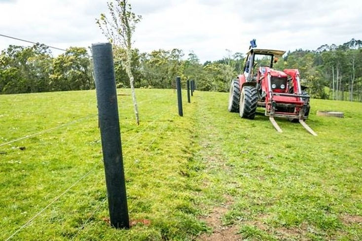 Farm Fence Posts.jpg