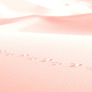 Pink%20Sand_edited.jpg