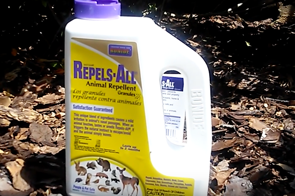 Repels all animal repellent for armadillos