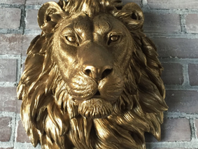 LIONS - Strength, Courage & Power