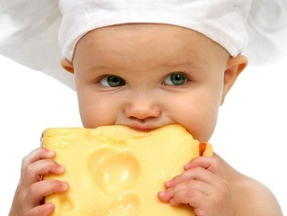 Impacto del consumo del queso en la salud humana