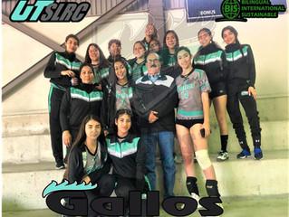 XXIV Encuentro Regional Deportivo y Cultural