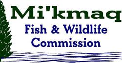 mi'kmaq fish & wildlife commision