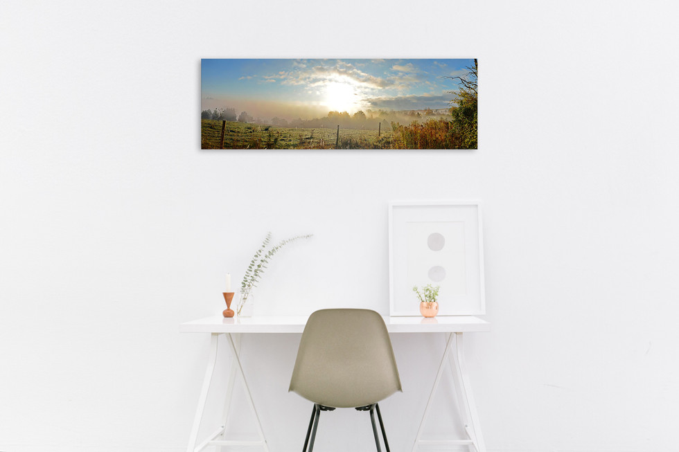 Awoke - $160 - 36 x12 - Out of Stock
