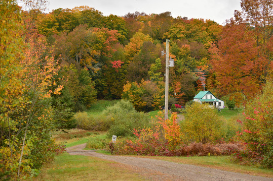 Back Rd Brierly Brook, Antigonish