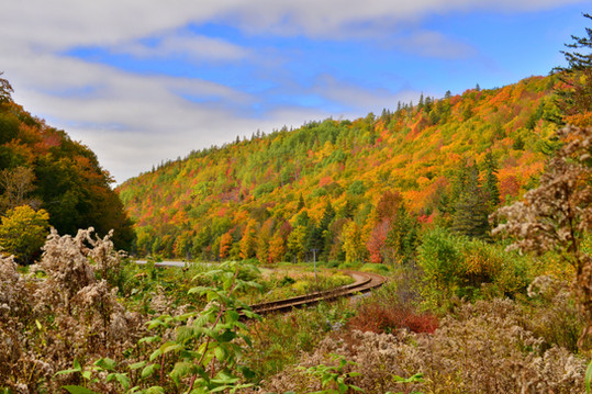Barneys River, Antigonish