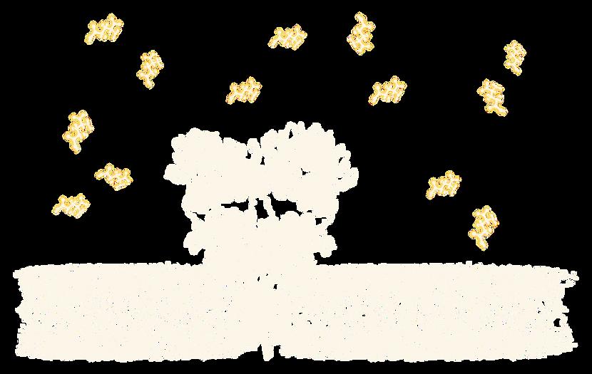AMPA receptor - glutamate