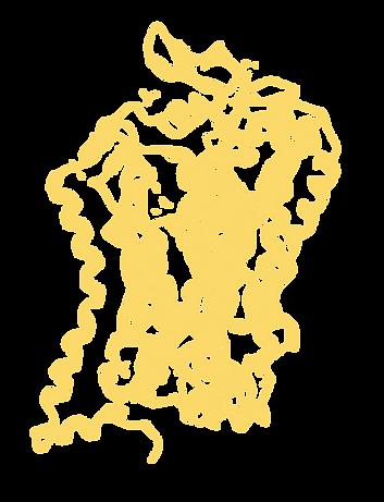 5httlpr: serotonin transporter, crystal structure