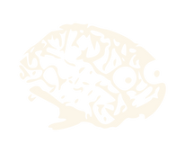 neuroskeptic: from fMRI, a New Phrenology?