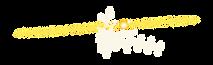 PET tracer, THC, tetrahydrocannabinol