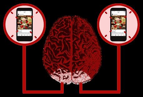 Visual Cortex Consciousness