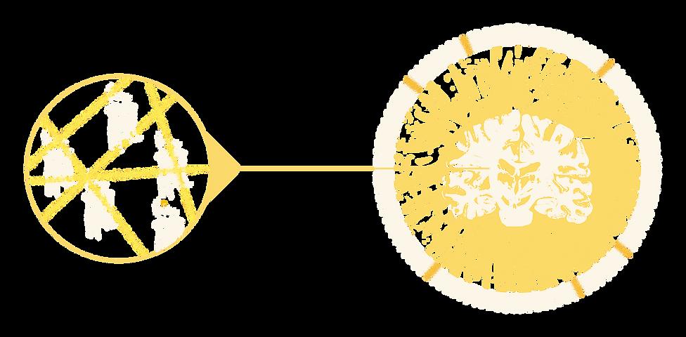 PET imaging schematic, Positron Emission Tomography, cannabinoid receptors in the human brain