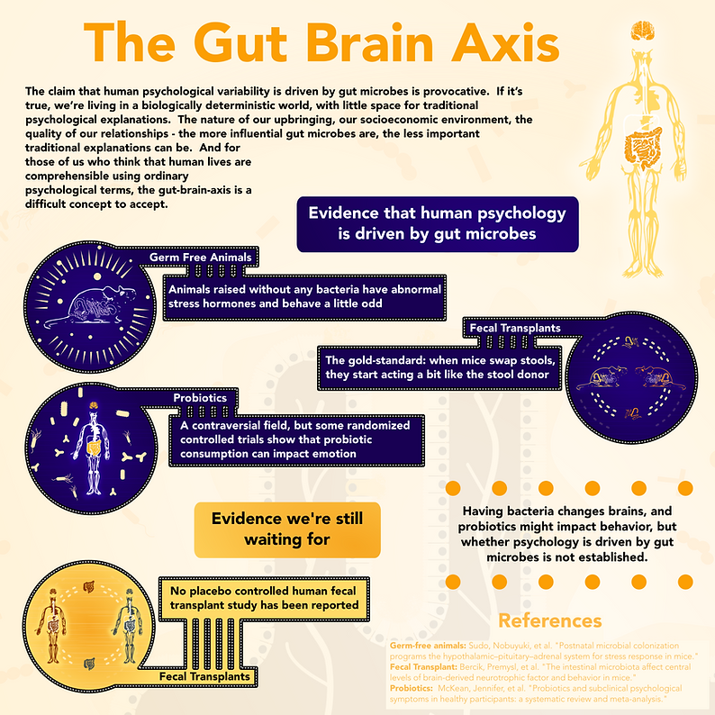 Infographic - Gut Brain Axis