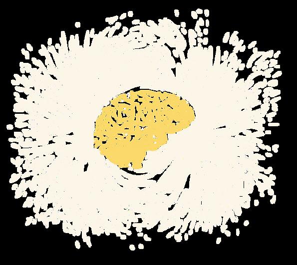 Image of  human brain in magnetic shavings:  fMRI, Brain images, MRI Brain, neuroimaging, brain, psychology