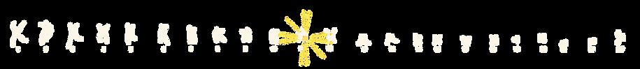 Chromosome 11: BDNF: Brain Derived Neurotrophic Factor