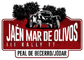 rally,tt,mar de olivos,rallyeraidpassion.com