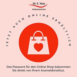 Online Shop Grafik.png