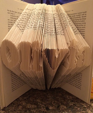 Book Envy Art - Custom name - Folded book - Unique gifts and home decor