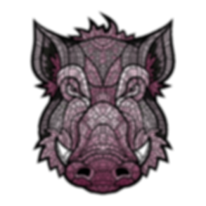 pinkboar2.png