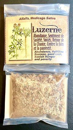 Luzerne (Herbes Magiques, sachet de 30 gr)