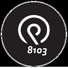 PT8103_Logo_weiss.png