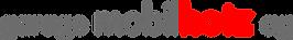 Logo garage mobilhotz ag auf California Werkstatt
