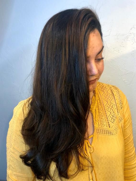 Healthy Hair Treatment + Caramel Highlig