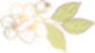 Abelia Salon- flower.png