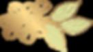 Abelia Salon- flower.png