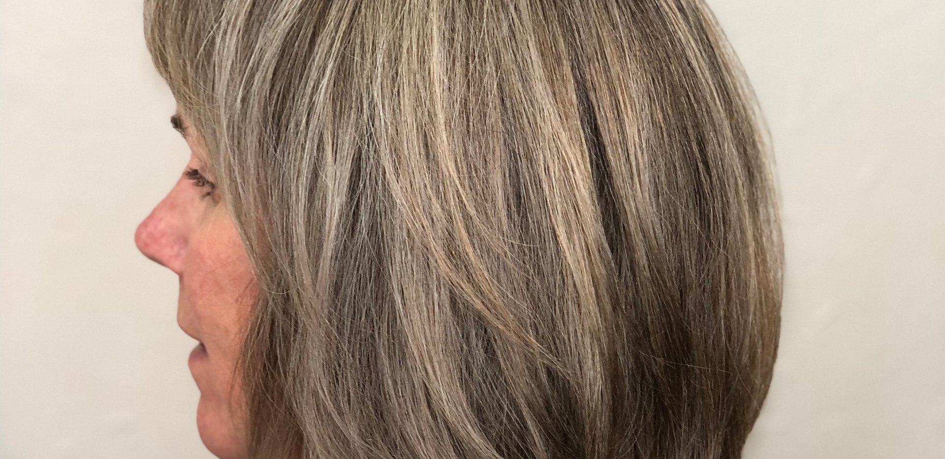 Brunette to Natural Gray Transition Silv