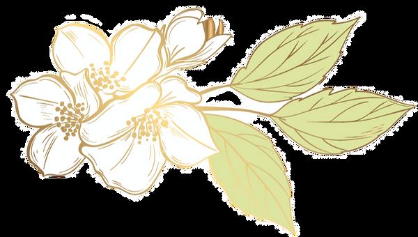 Abelia Salon Logo _To Breathe_