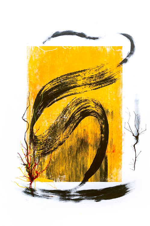 DANIEL TUMMOLILLO. 'MONOTIPO E'