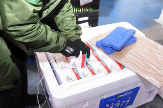 Paraná recebe 137,2 mil vacinas contra a Covid-19 para D2; doses de reforço chegam no sábado