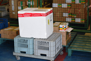 Saúde inicia distribuição de mais 258,6 mil vacinas contra a Covid-19