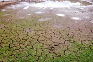 Rodízio em Santo Antônio do Sudoeste e Pranchita segue por mais 15 dias