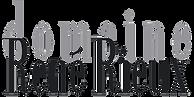 logo_dom_rieux1 copie.png