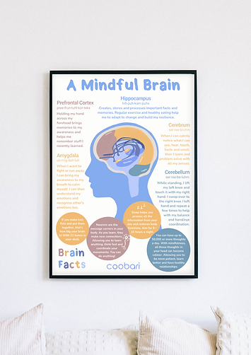 A mindful brain poster.png