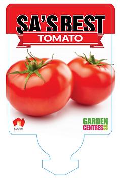 sa tomato.PNG