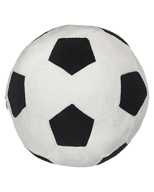 Soccer-Ball-Buddy.png