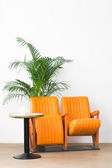 法國佬电影院椅