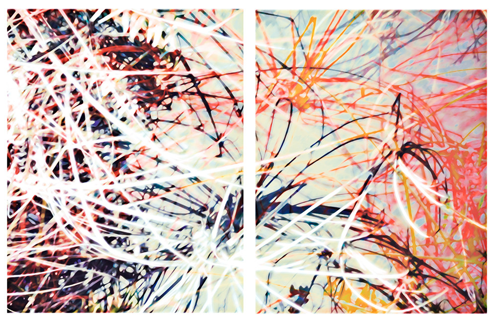 Reeds Diptych 2