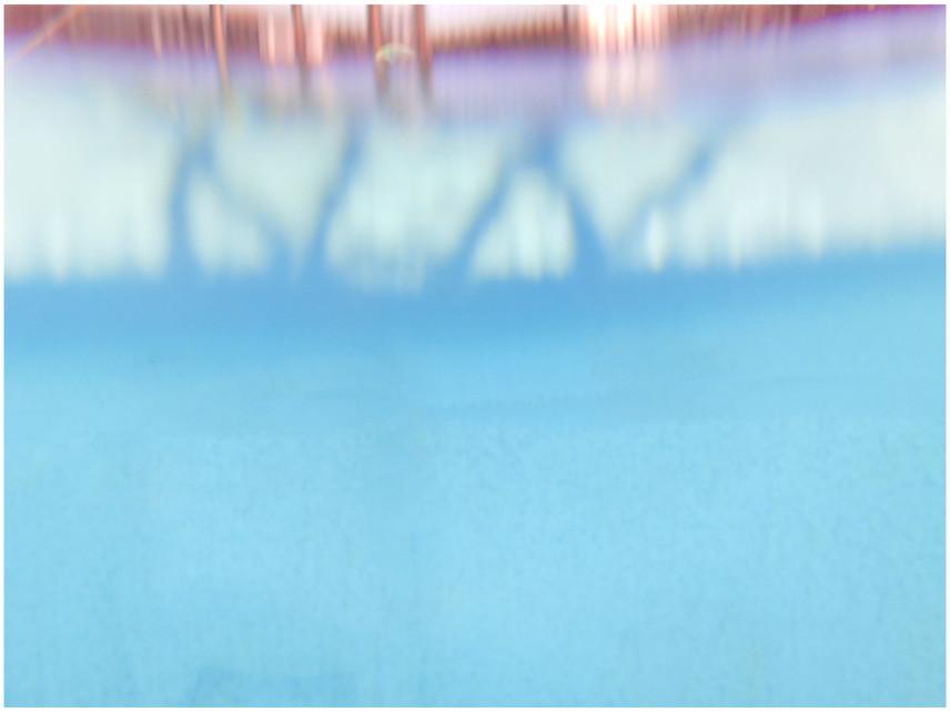 Splash 01601