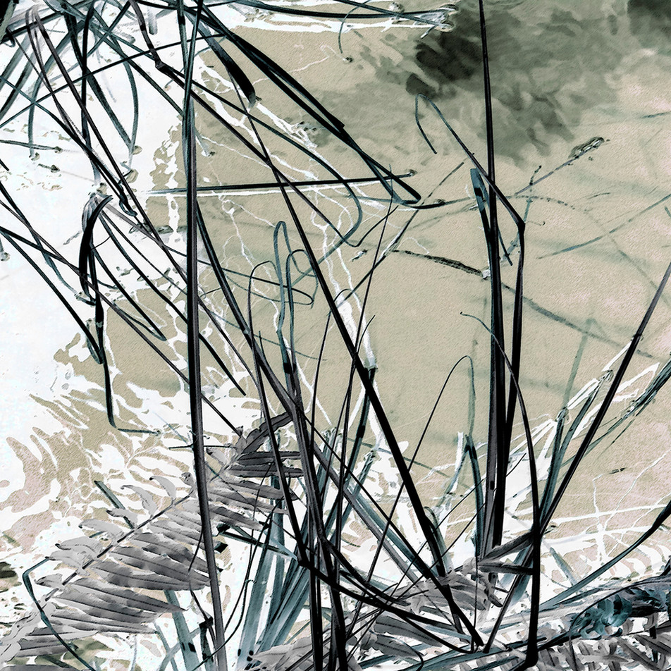 Reeds 5