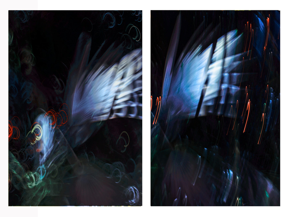 In the Light of a Blue Moon diptych