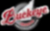 Buckeye Granite | Logan Ohio, Athens Ohio, Kentucky, West Virginia, Columbus Ohio, Granite Countertops, www.buckeyegranite.com, Cheap Countertops, Kitchen, Bathroom, Outdoor Living, Laminate, Remodel, Renovation, Quality Countertop Surface, google, yahoo, Bing, yelp, call, low price, sales, special, professional, fast, fit, labor, easy, granite, surfaces with granite, frasure, fabricate, fabrication, installation, 740-385-9111, 899 west hunter street