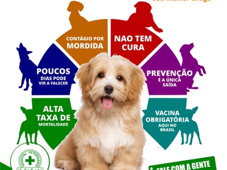 NÃO FIQUE COM RAIVA APÓS PERDER SEU MELHOR AMIGO